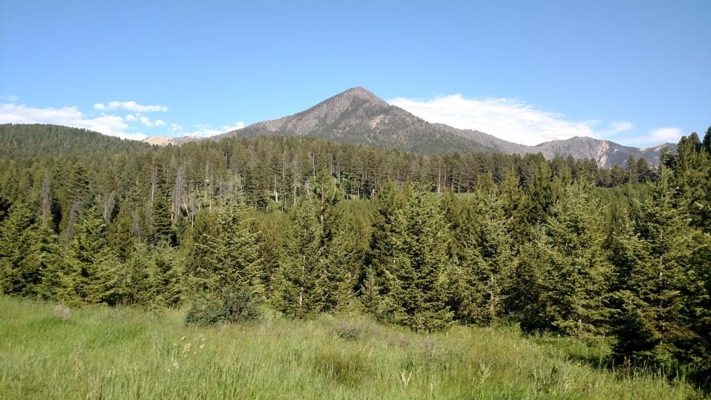 Livingston Peak.