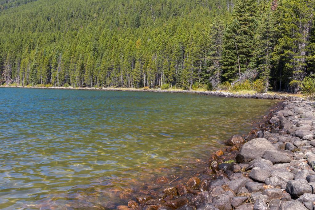The rocky shoreline of Island Lake.
