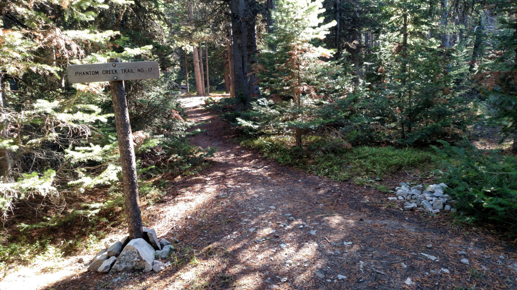 Intersection with Phantom Creek Trail No. 17.