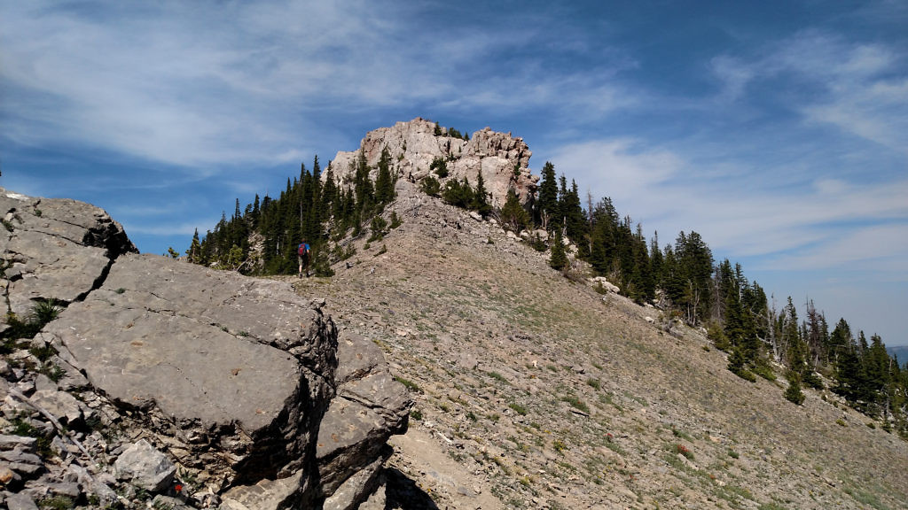 The actual summit of Baldy Mountain. Photo taken July 2015.