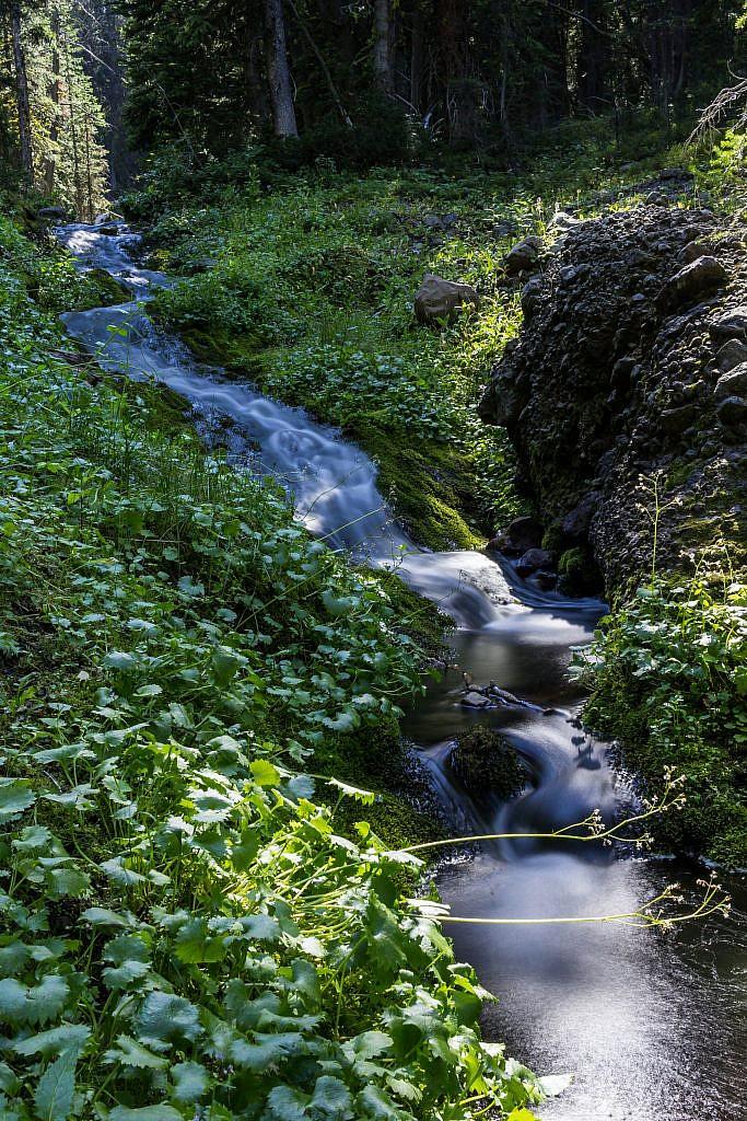 Long exposure shot of Blackmore Creek.