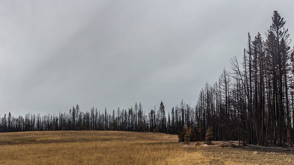 Remnants of the Wigwam fire.