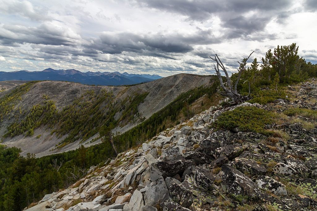 Stine Mountain (9,490′), the highpoint of the West Pioneers, can be accessed via northern terminus of the Pioneer National Scenic Trail.