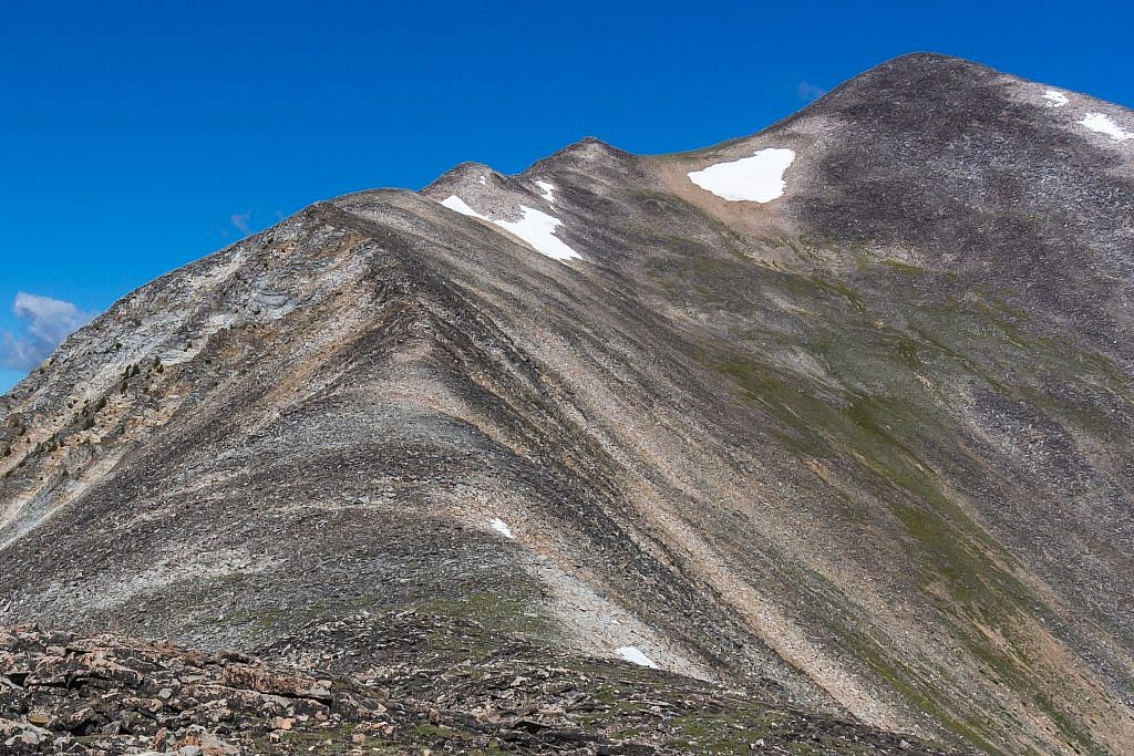I chose to sidehill around the increasingly large humps near the top to the saddle just below Torrey's summit.