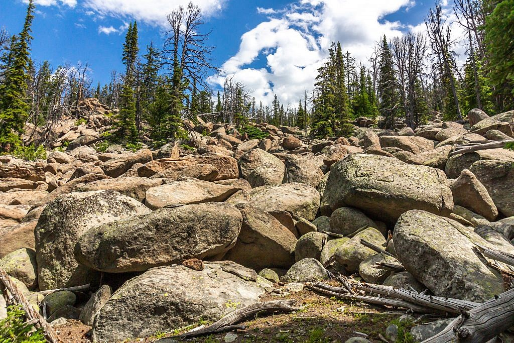 One of the many boulder fields you'll encounter while on the trail.