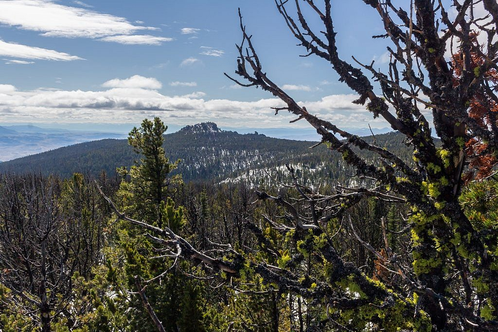 Elk Peak.