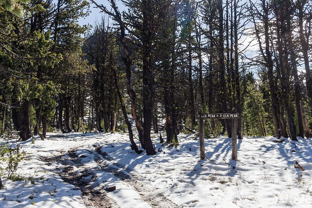 The base of Elk Peak. From here's it's a simple and fun off-trail scramble up some boulders to the summit.
