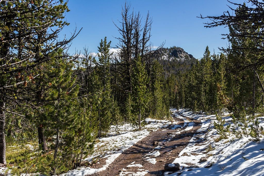 The final stretch of road between Elk Peak and Wapiti Peak.