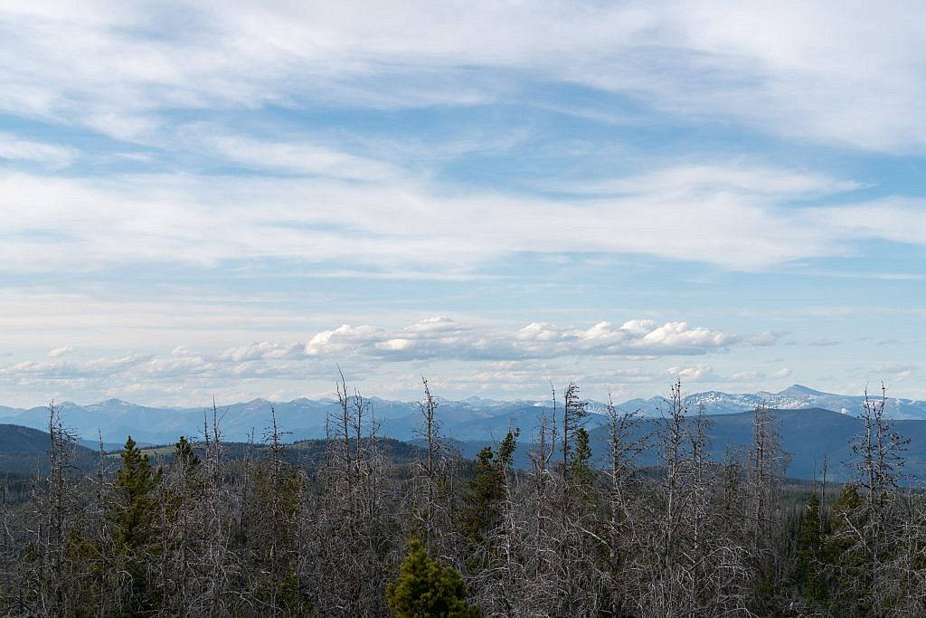 Looking north from the summit towards the Lewis and Clark Range. Red Mountain, the highpoint, is on the far right.