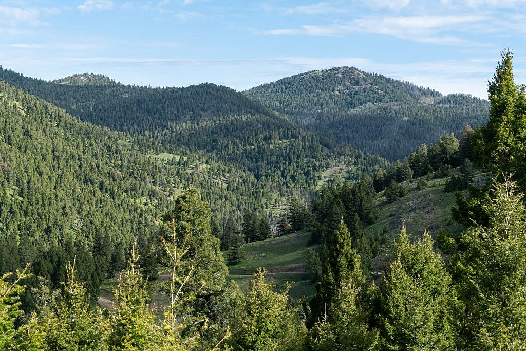 Old Baldy Mountain with the Brock Creek drainage in the foreground.