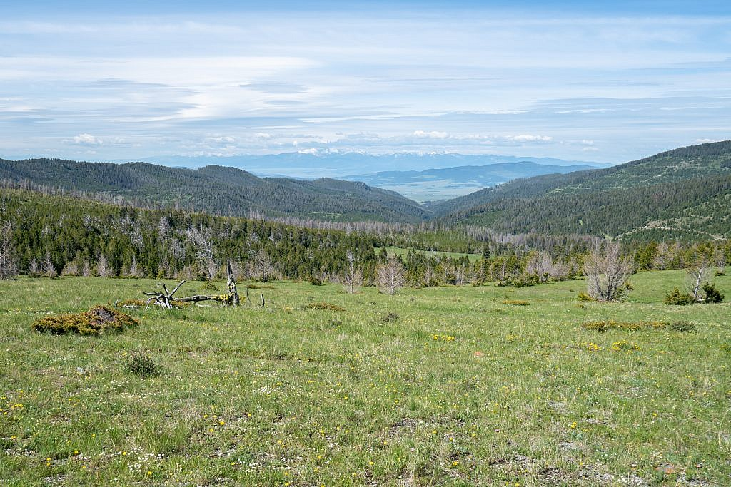 Looking west down the Ophir Creek drainage which you take to get to the trailhead. Flint Creek Range in the distance.