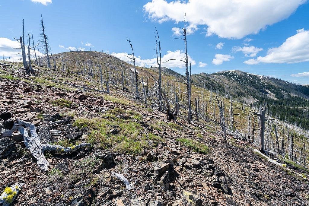 The off-trail section along the ridge is very scenic and pleasant trek. There are a few short talus scrambles but the terrain is easily navigable. I recommend sticking to the top of the ridge and enduring a few extra ups and downs for the extra scenery.