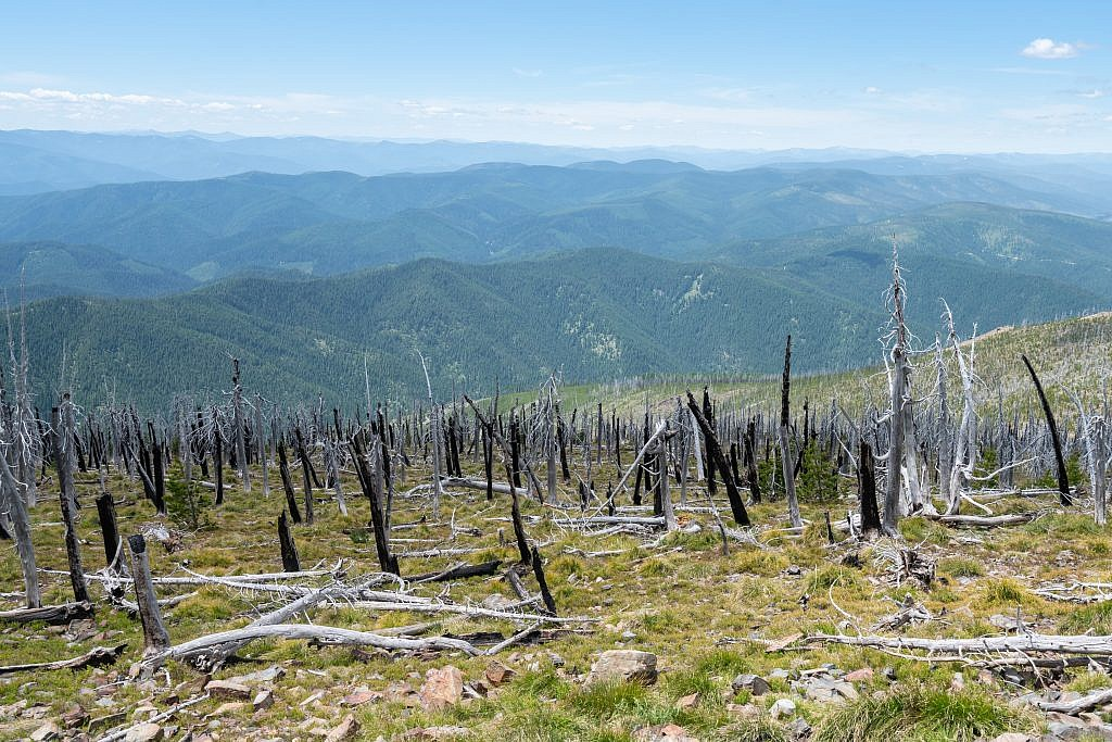 Looking west from the summit over the Cour d'Alene Mountains. The vastness of the Bitterroot Range is mind-boggling.
